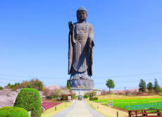 Visit Ushiku Daibutsu and enjoy shopping in Ibaraki!