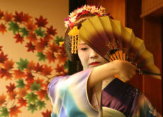 Enjoy Geisha Performance and Kaiseki Dinner in Tokyo