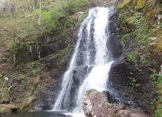 Enjoy Takayama's nature:13 waterfalls, flower park and onsen
