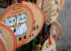 See the area beyond Sensoji: half-day tour north of Asakusa