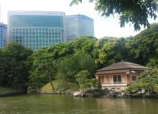 Tour Hama Rikyu Gardens and Asakusa, Tokyo