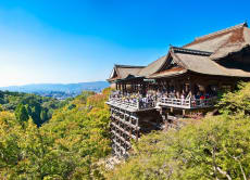 Explore the Historical Cities of Kyoto and Nara in 1 Day!