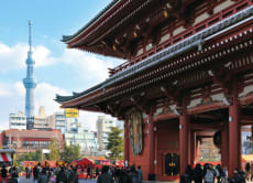 Embark on a Customized Tokyo Tour & Eat Authentic Local Food