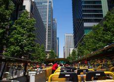 Ride the Tokyo Sky Bus on a Tour around Tokyo