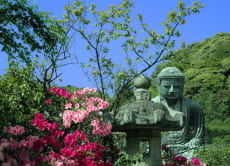 Ancient Kamakura and the naval history of Yokosuka