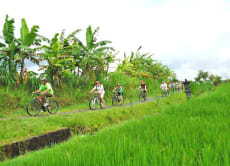 Bali Cycling Tour: Explore the True Heart of Bali