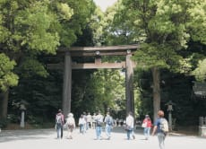 Explore Meiji Jingu shrine and the Imperial Palace in Tokyo!