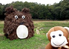 Meet Totoro! Hike rich-nature Japanese countryside!