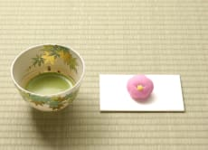 Get into Zen Garden and Drink Green Tea in Kamakura