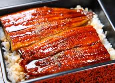 Reserve Unagiya Hirokawa Michelin 1-star Eel in Kyoto