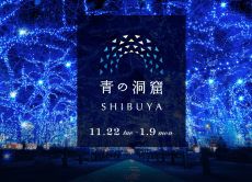 Go out on a winter illumination viewing and meet-up in Tokyo