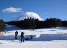 Mt. Fuji Ski Resort & Hot Spring Tour