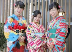 Rent Mamechiyo modern kimono in Kanazawa