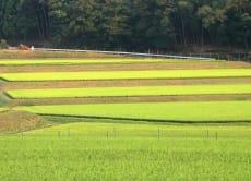 Enjoy Japan's countryside and farmer's life near Kyoto