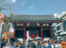Food and Cultural Tour -  Asakusa Food Hunt!
