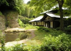 Take a Secret & Sacred Temples Trip in Kamakura!