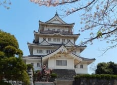 See the Chiba Castle and Chiba Shrine on a guided tour!