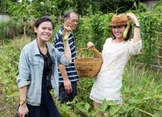 Pick Ingredients at an Organic Farm and Cook a Thai Meal