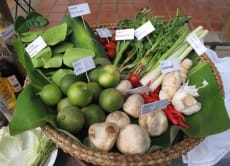 Learn about Thai Herbs & Cook your Own Traditional Thai Food
