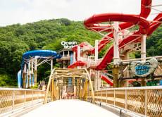 Vivaldi Park Ocean World Korea Instant E-Tickets