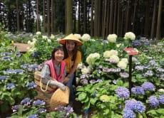 Narita Airport Volunteer Guide Tours