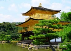 Kyoto Tour: From the Golden Kinkakuji to the Nijo Castle
