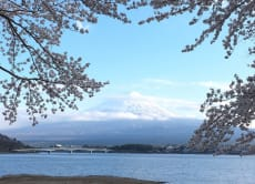 Beautiful views of Mt. Fuji 5th station and Lake Kawaguchi