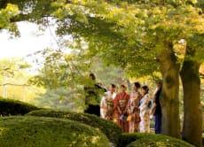 Golden Kanazawa Tour: Gardens, Castles, Geishas