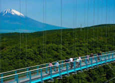 Enjoy the view of Mt. Fuji from a suspension bridge skywalk!