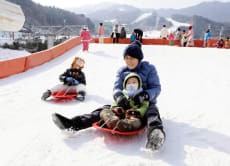 Jisan Resort 1-Day Ski / Snowboard Tour from Seoul