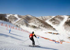 High1 Resort 1-Day Ski / Snowboard Tour from Seoul