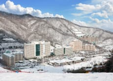 Daemyung Vivaldi Park: 2-Day 1-Night Ski Package from Seoul