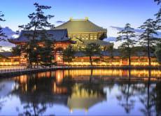 历史古都:5日自助游 行走在奈良与飞鸟间
