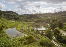 体验文化遗产:10天原汁原味的日式乡村生活