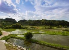 沉浸日本乡间风光,飞鸟和奈良四天三夜旅行