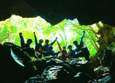 20% OFF Nature Walk & Ice Caving at Fuji Mysterious Forest