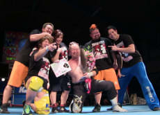 Experience K-DOJO Pro Wrestling Training!