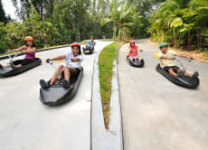 36% OFF Skyline Luge Sentosa Singapore Instant E-Tickets
