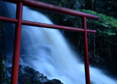 Fuji Volcanic Shrine: Experience Shinto & Short Hiking Tour