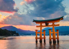 Explore Miyajima & Hiroshima in a Full Day Tour