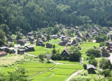 Book a One Day Trip to Shirakawago, Gokayama, or Takayama!