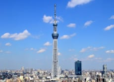 Half Day Tokyo Skytree Area Bus Tour and Tokyo Bay Cruise