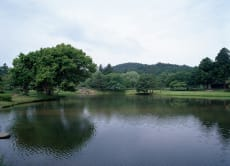 3 Hour Taxi Tour of the World Heritage Sites of Hiraizumi