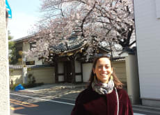 Enjoy a Walking Tour in Yanesen area (Yanaka, Nezu, Sendagi)