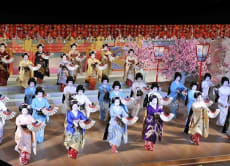 April 1-16: Kyo Odori in Kyoto and Dinner with Maiko