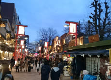Enjoy Traditional Tokyo Nightlife in Asakusa with a Local