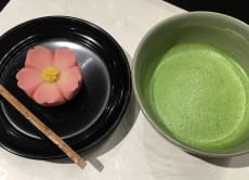 A Delicious Introduction to the Flavors of Japan and Wagashi