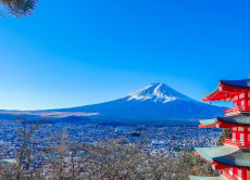 Mt. Fuji and Hakone Private Chartered 1-Day Tour by Car