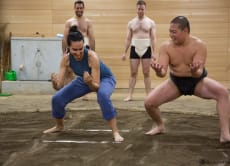 20% OFF Sumo Training Experience in Tokyo
