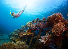 25% OFF 巴厘岛浮潜:蓝梦岛浮潜一日游